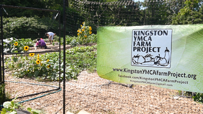 kingston farm project